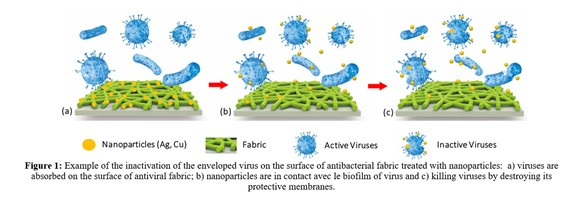 Figure about inactivation of the virus on the surface of antibacterial fabric treated with nanoparticles